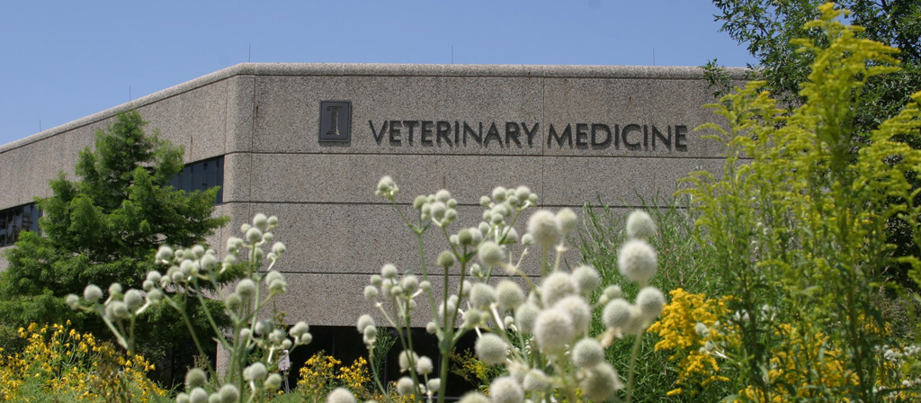 The College of Veterinary Medicine at the University of Illinois on a clear, spring day.