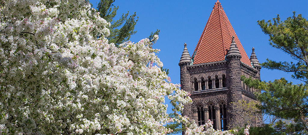 Altgeld Hall at the University of Illinois on a bright spring day. A tree of with white blossoms is in bloom.